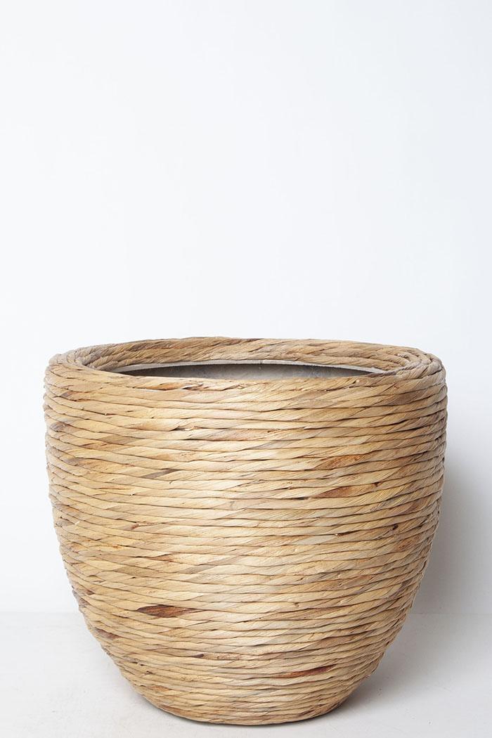 鉢カバー マラッカウォーターヒヤシンスRD(10号鉢)